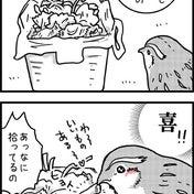 うずらの宝箱で喜怒哀楽【前編】