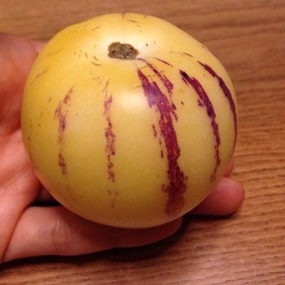 長生き長寿のフルーツの記事に添付されている画像