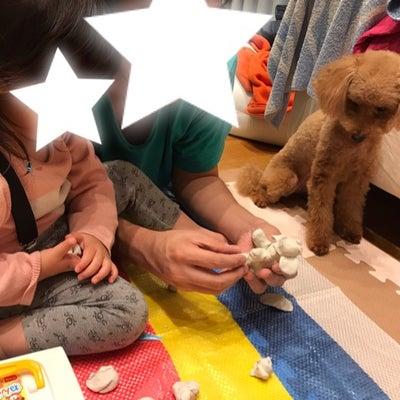 粘土遊び&パパの寝かしつけの記事に添付されている画像
