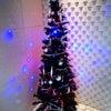 ☆クリスマスツリーと・・・☆の画像
