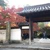 そうだ京都に行こう!の「一休寺」の画像