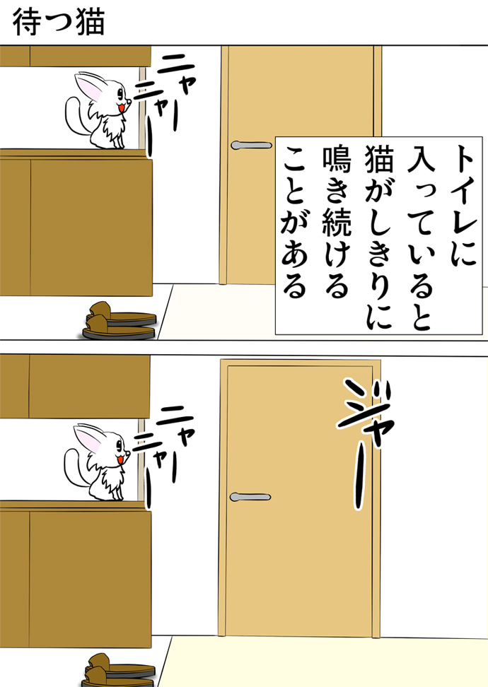玄関の靴入れに乗ってトイレの扉に向かって泣き続ける白い子猫