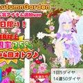 #秋桜の画像