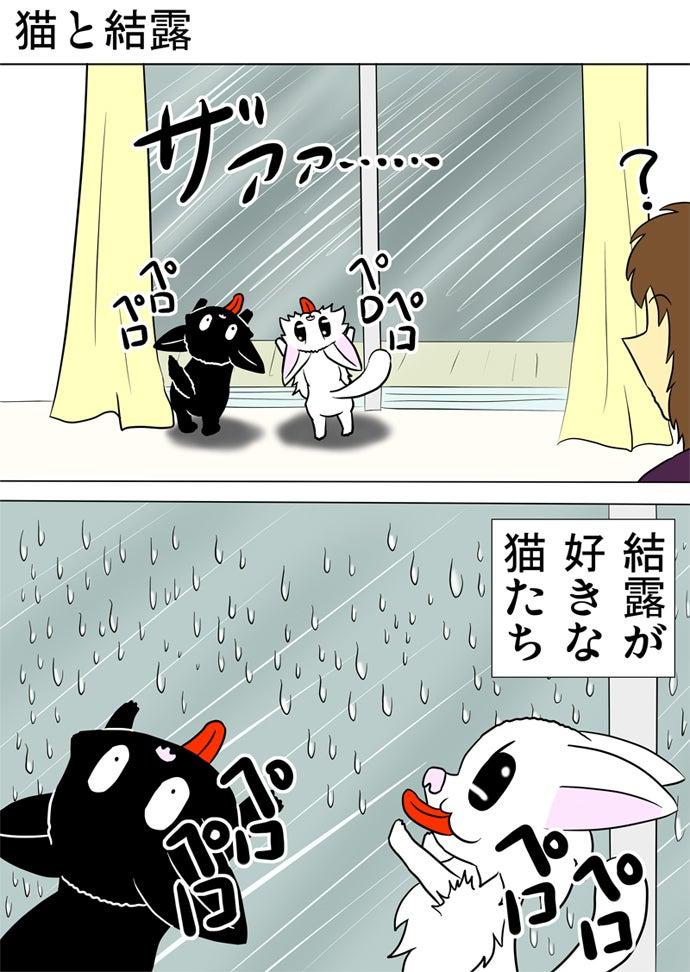 外が土砂降りで窓についた結露を両後ろ足で立って両前足を窓につけてなめる黒い子猫と白い子猫と眺める女性