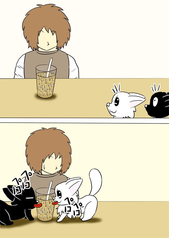 ストローを刺した結露のついたコップに注がれたウーロン茶を見下ろして結露をなめる黒い子猫と白い子猫を呆れて眺めるテーブルの前の男性