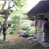 目黒区総合庁舎でのお茶会の画像