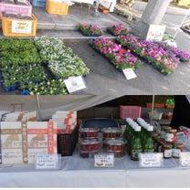 11月24日イベント♡出店者様紹介♡160店舗めの記事に添付されている画像