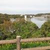 吞吐ダムに紅葉ドライブに行きました。の画像