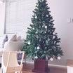 クリスマスツリーについて♡