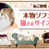 ネコちゃんへのクリスマスプレゼントに、猫さま専用ソファがゴージャス! 愛犬愛猫にプレゼントの画像