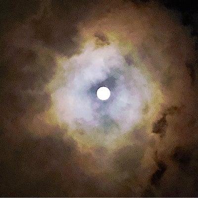 双子座満月からのメッセージ‼️これからの過ごし方‼️の記事に添付されている画像