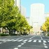 11月25日(日)大阪マラソンの日の画像