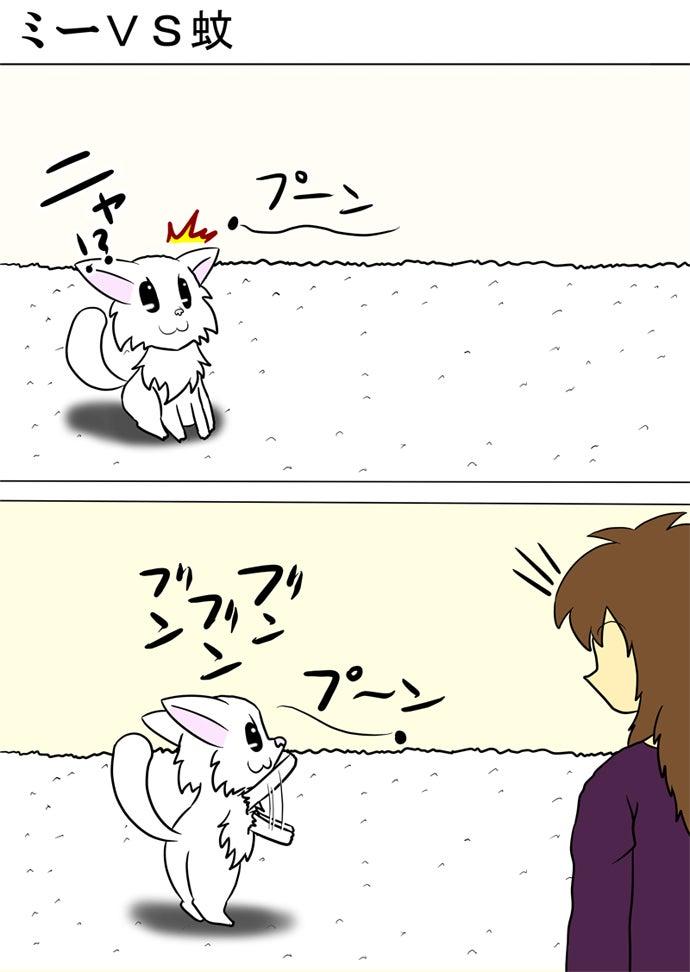 白い絨毯の上に座って飛んでくる蚊を見上げて両後ろ足で立って両前足を上下に振る白い子猫を見下ろす女性
