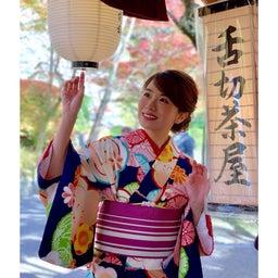 画像 京都の紅葉… の記事より 4つ目