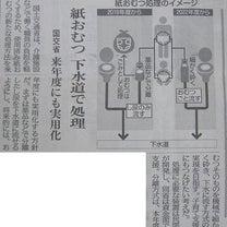 何でもトイレに流しちゃう日本人!?の記事に添付されている画像