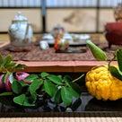 【開催レポート】方円流×世界茶会. 秋の茶会の記事より