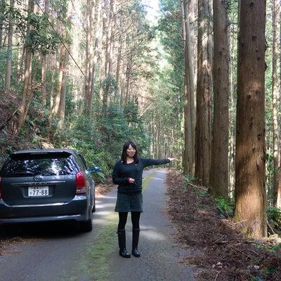 小さな旅「三河探訪」の記事に添付されている画像