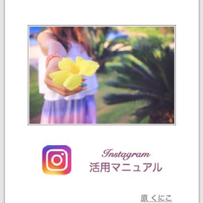 集客は断然Instagramから♡『Instagram活用マニュアル』先着100の記事に添付されている画像