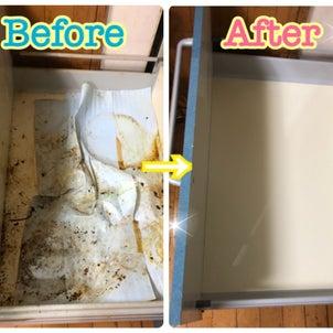VS長年掃除していないキッチン収納(第2戦)の画像