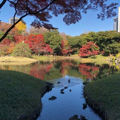 都心の紅葉スポット小石川後楽園に行ってきました1の記事に添付されている画像