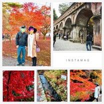 17w 紅葉と義母への報告の記事に添付されている画像