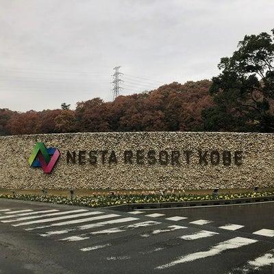 ネスタリゾート神戸!の記事に添付されている画像