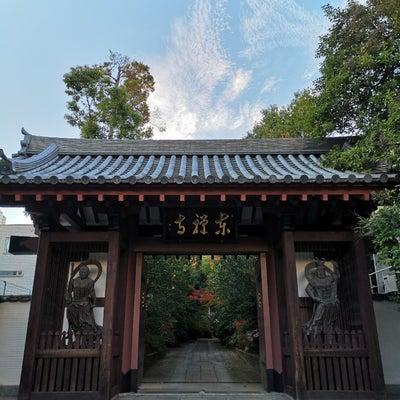 高輪 東禅寺の記事に添付されている画像