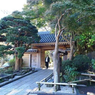 鎌倉に行ってきました!part4の記事に添付されている画像