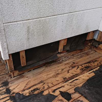シロアリ被害の形跡がの記事に添付されている画像