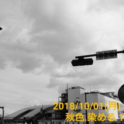 『18/10/01○嵐が去った朝』の記事に添付されている画像