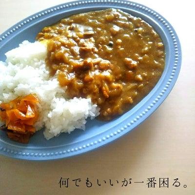 白菜と鶏挽き肉の和風カレーの記事に添付されている画像