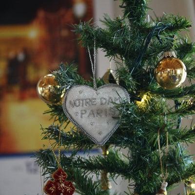 クリスマス ブーケを束ねませんか?の記事に添付されている画像