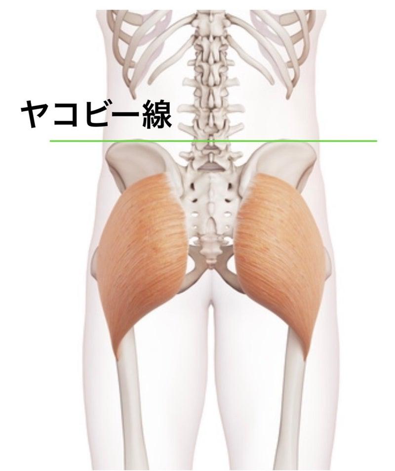 線 ヤコビー 腰椎穿刺のコツ1