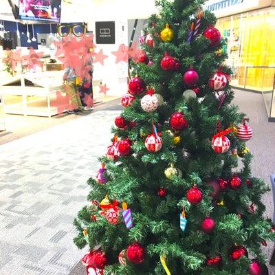 クリスマスツリーを見るとの記事に添付されている画像