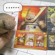 長野初の鳥イベントへ!