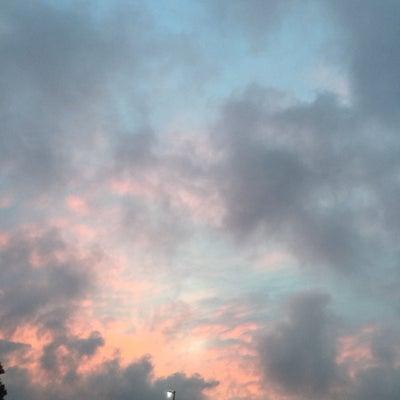 pink color の日の記事に添付されている画像