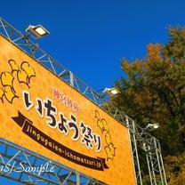 マネラボコラム第34回・神宮外苑いちょう祭りでストックフォト集め!の記事に添付されている画像