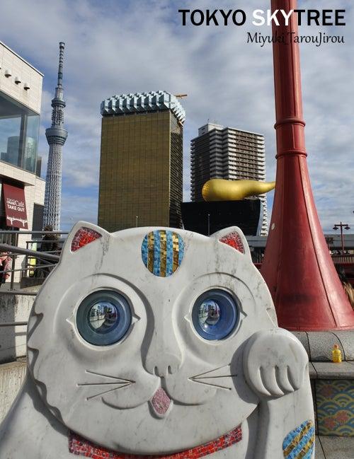 浅草 吾妻橋 東京スカイツリー 風景写真