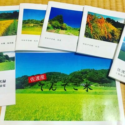 トキが舞う佐渡で作られた減農薬の【てんてこ米】の記事に添付されている画像