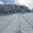 除雪は日課、運動です