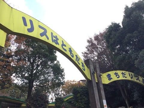 o0480036014320308780 - ♪12/8(土) ♪ toiro 戸塚