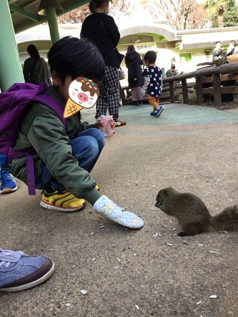 o0480064014320308848 - ♪12/8(土) ♪ toiro 戸塚