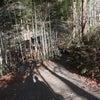 月待の滝は、安産開運の神様。女性の守り神ような癒しの滝★茨城県の画像