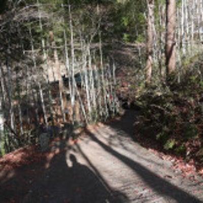 月待の滝は、安産開運の神様。女性の守り神ような癒しの滝★茨城県の記事に添付されている画像