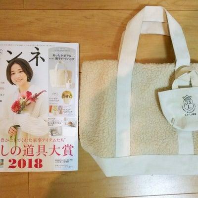 【付録買い】冬に大活躍のバッグ*の記事に添付されている画像