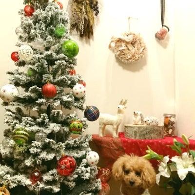 クリスマスツリー飾ってる?・集いから学校へ・クリスマス会(つづき)の記事に添付されている画像