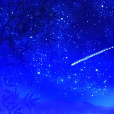 ふたご座流星群☆彡✨の記事に添付されている画像