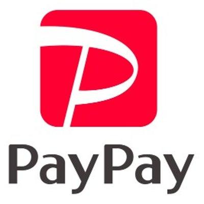 PayPayの決済が、めちゃくちゃスピーディーで簡単!クレジットカードならポインの記事に添付されている画像