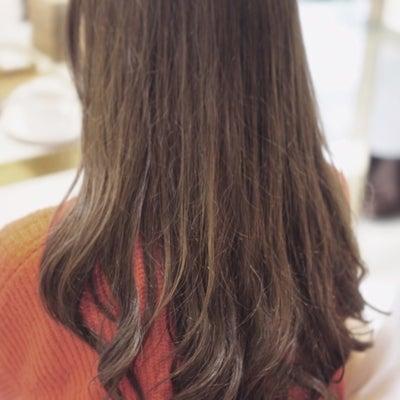 軟毛さんにデジパーの記事に添付されている画像
