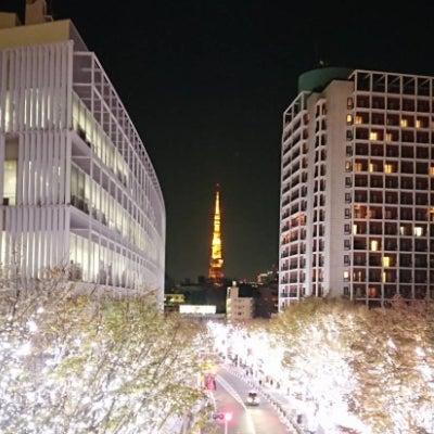 年末年始の予定とイルミネーション♪【男性セラピストアロママッサージ 東京 渋谷&の記事に添付されている画像